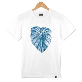 Blue palm2