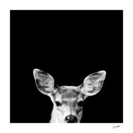 Deer Me