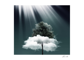 Tree and cloud