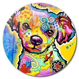 Belota Colorful Puppy Dog