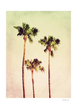 PASTEL PALM TREES no2