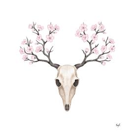 Blooming deer skull