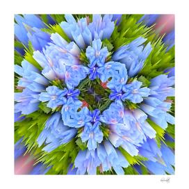 blooming blue