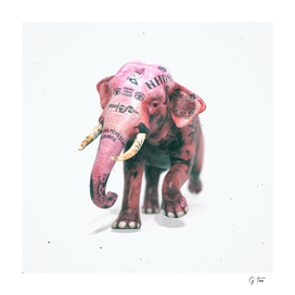 I believe in pink elephants