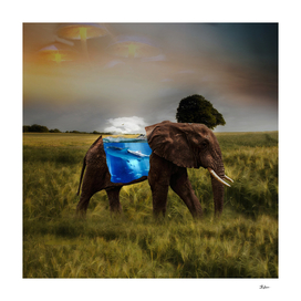 Elephant With A Aquarium | Visual Art