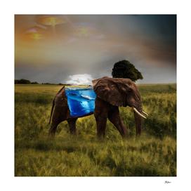Elephant With A Aquarium | Visual Art