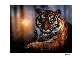 The Tiger and the Magic Butterfly by GEN Z