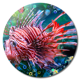 Wondering where the Lionfish Are