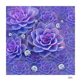 """""""Bouquet of pastel violet exotic succulents"""""""