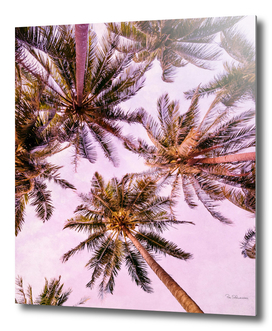 PASTEL PALM TREES no5b