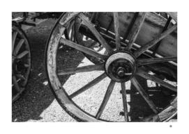 Wagon Wheel Monochrome