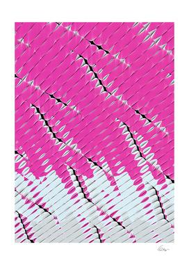Dextro.org_G018b