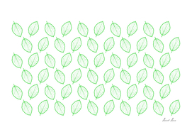 Beech leaf - pattern