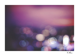 lilac light dreams