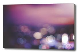 lilac light dreams