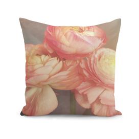 soft pink anemones