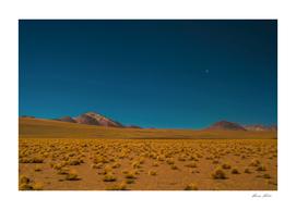 .desert.