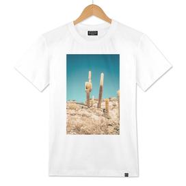 .uyuni cactus.