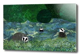 Badgers Amongst the Bluebells