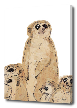 Meerkat Mum