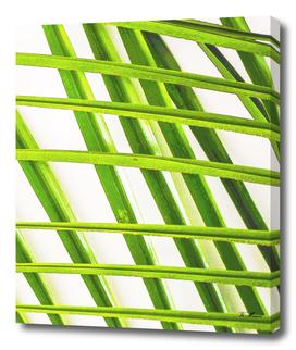 palmleafes grid