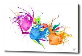 Colors-Ecstasy