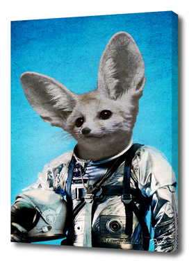 Captain fennec