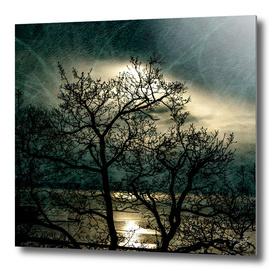 Landscape in a dream