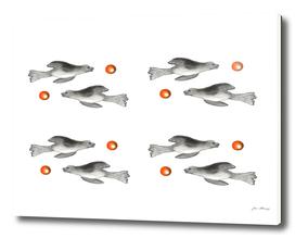 Seals playing ball