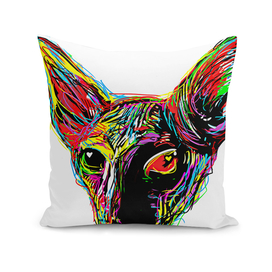 Sphynx cat Love
