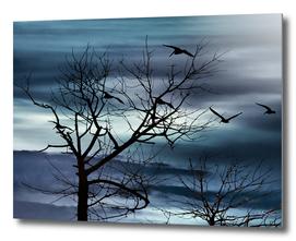 Night Nature Scene Photo Illustration