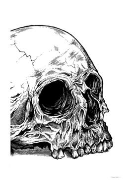 Giant Skull Detail