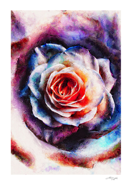 Artistic - XXV - Abstract Rose