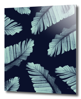 Navy Blue Banana Leaves Dream #2