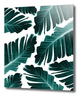 Tropical Banana Leaves Dream #1