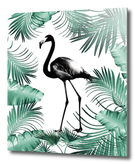 Flamingo in the Jungle #2