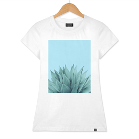 Agave Vibes #6