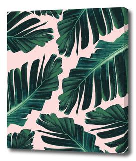 Tropical Blush Banana Leaves Dream #1