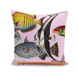 Fish World Pink #collage