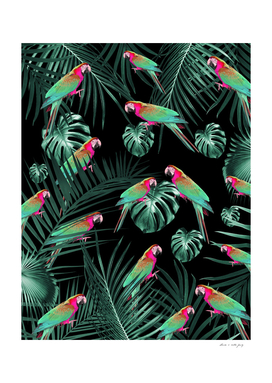 Parrots in the Tropical Jungle Night #1