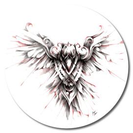 Bearded_Eagle