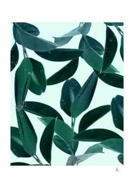 Plant Dynamics