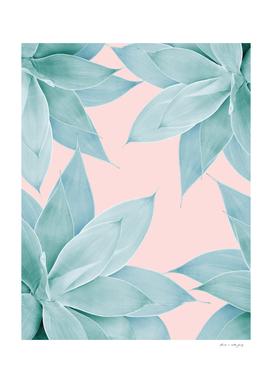 Agave Flower Dream #1