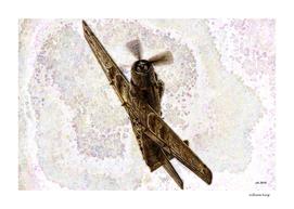 002 A6 Skyraider