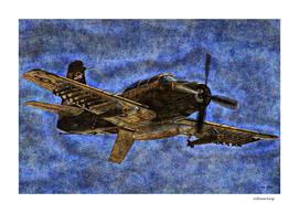 011 A-1E Skyraider