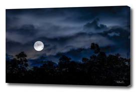 Moonscape Dark Scene Illustration Collage