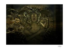 Medusa's Rage