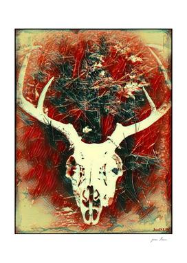 Deer Skull VII