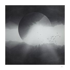 spaces VIII  -singularity