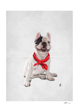 Frenchie (Wordless)
